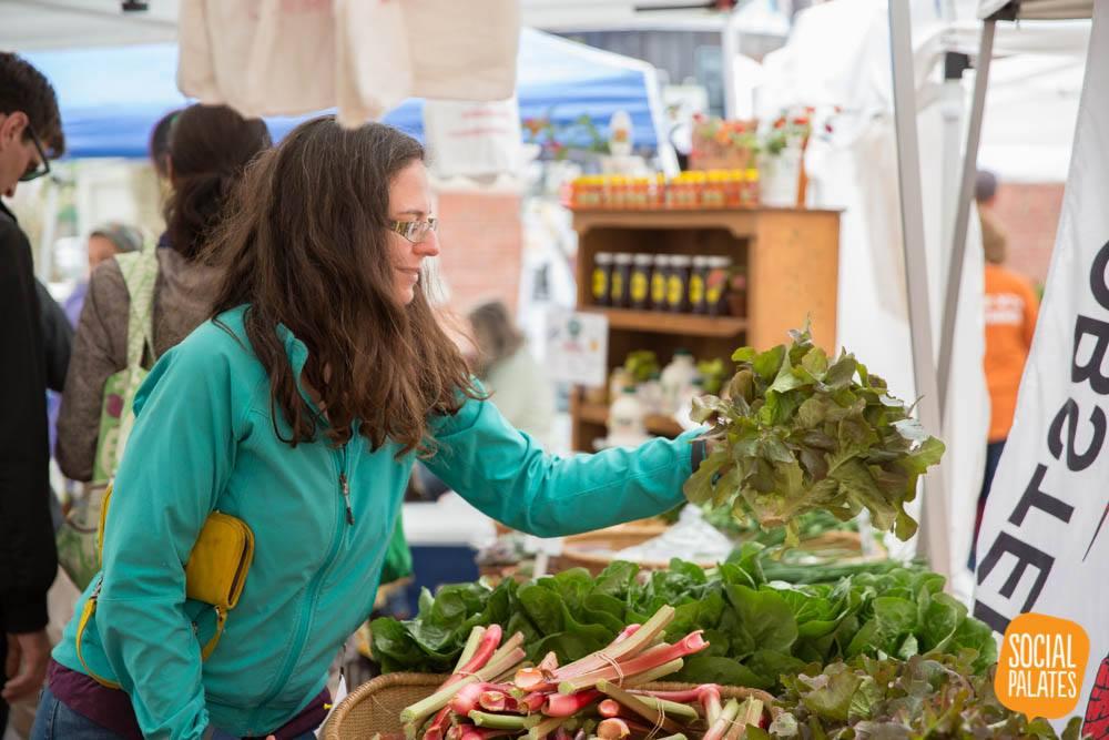 Megan at Clark Farm stand - Week 1