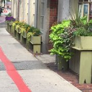 Be a Part of Salem's Beautification